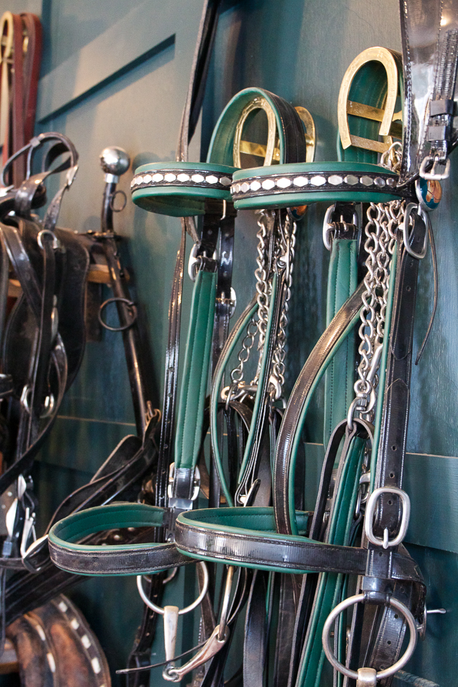 Clean bridles hanging neatly