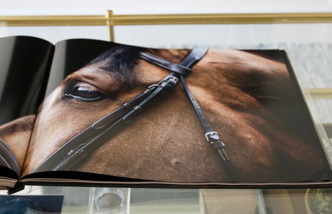 Inside the book, Horse-Human- An Emotional Bond by Bob Tabor