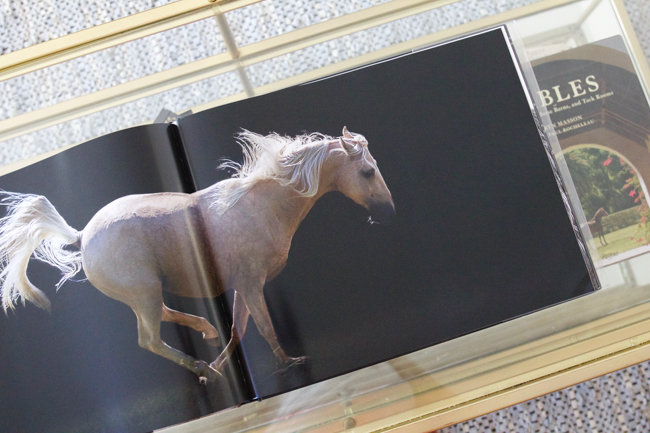 Looking inside the book Horse-Human- An Emotional Bond by Bob Tabor